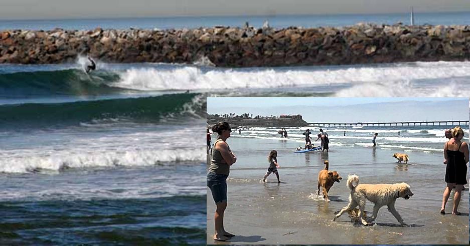 Ocean Beach Jetty Surf Spot