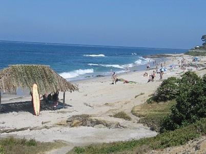 Windansea Beach Surf Spot