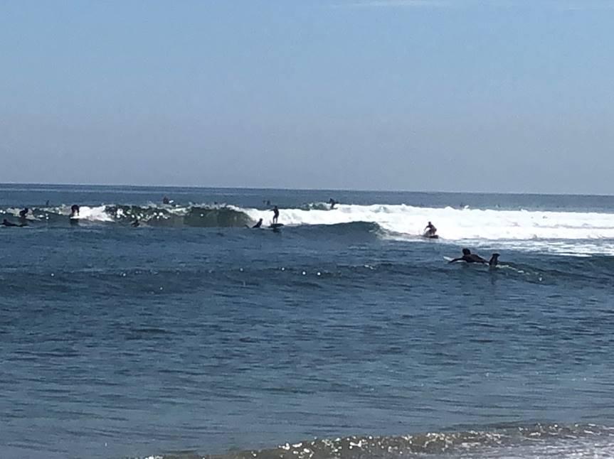 Malibu 1st Point 2-3 foot waves